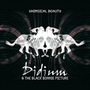 Didium And The Black Bonnie Picture: Whimsical Beauty