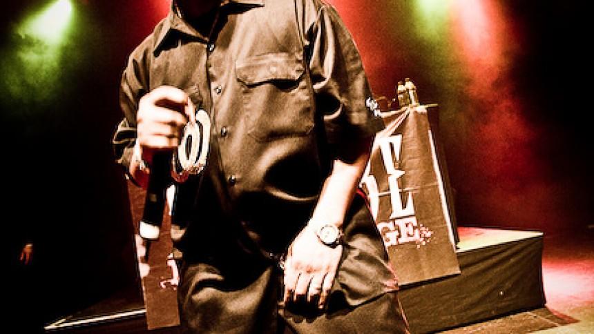 Ice Cube til Danmark