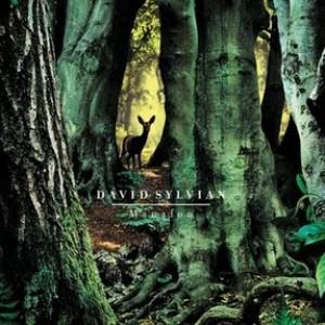 David Sylvian: Manafon
