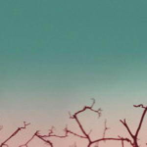 Mikael Simpson: Slaar Skaar - Udvalgte numre i andre versioner