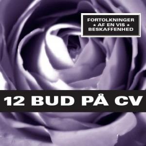 Diverse kunstnere: 12 Bud På CV– fortolkninger af en vis beskaffenhed