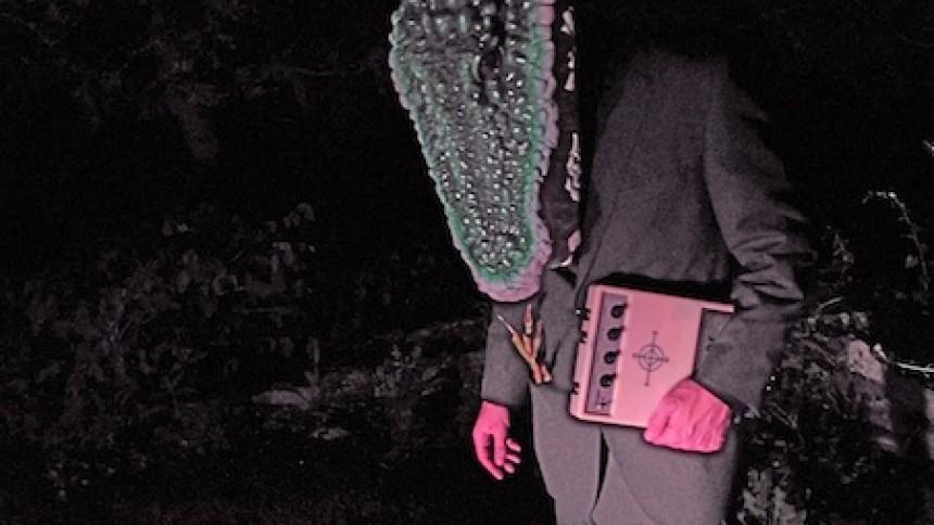 Animal Collective-medlem solodebuterer
