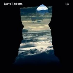 Steve Tibbetts: Natural Causes