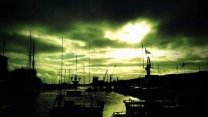 Ave på Færøerne