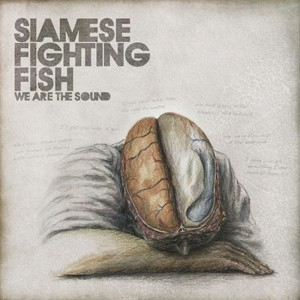 Siamese Fighting Fish: We Are The Sound