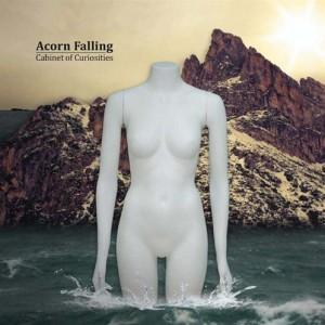Acorn Falling: Cabinet Of Curiosities