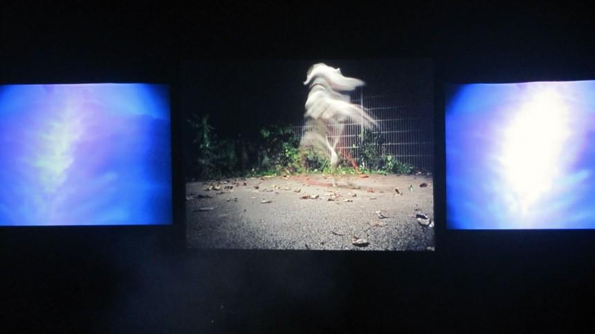 Chris Cunningham: Roskilde Festival, Arena