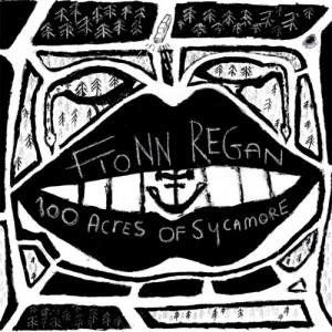 Fionn Regan: 100 Acres Of Sycamore