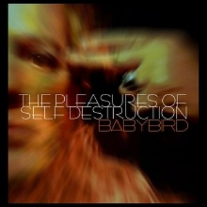 Babybird: The Pleasures Of  Selfdestruction