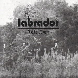 Labrador: This Time