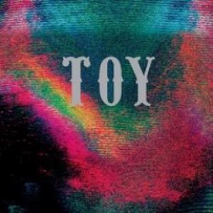 Toy: TOY