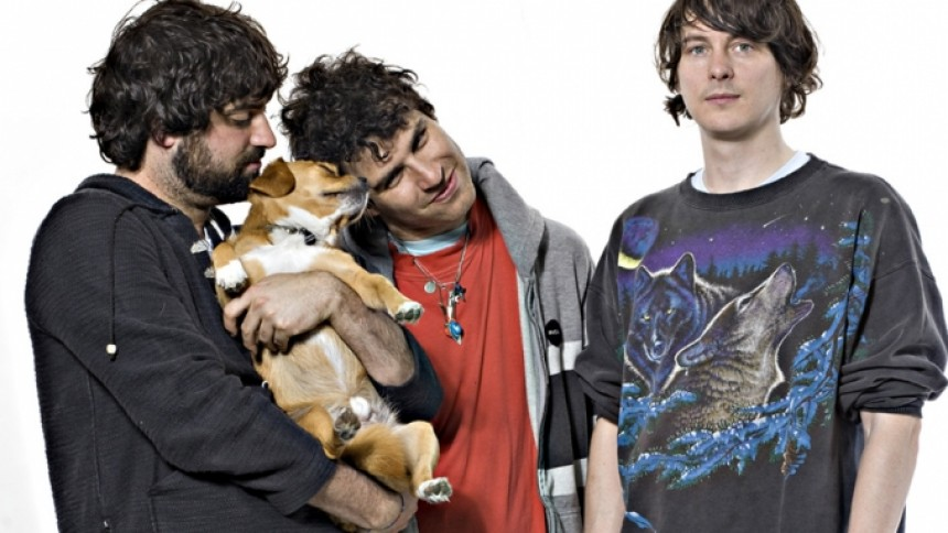 Animal Collective udgiver nyt album