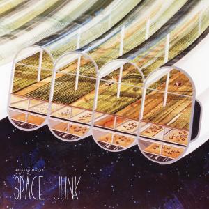 Halasan Bazar: Space Junk