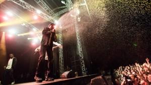 Wu-Tang Clan Vanguard Festival 2013 030813