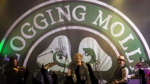 Flogging Molly Grim Fest 300715