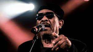 Roy Ayers Vanguard Music Festival 010815