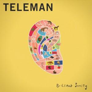 Teleman: Brilliant Sanity