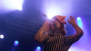 Koncerter: Vig Festival 090716