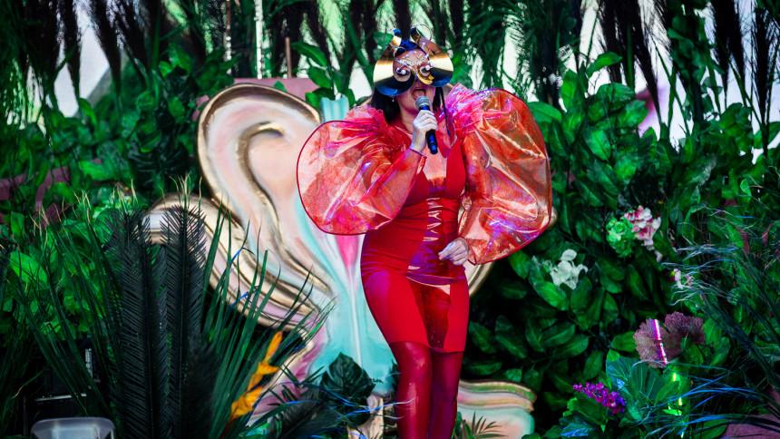 Björk er klar med udgivelser – på kassettebånd
