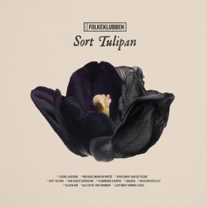 Folkeklubben: Sort tulipan