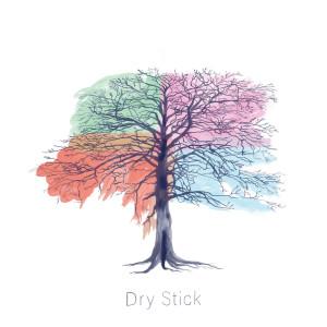Dry Stick: Spring