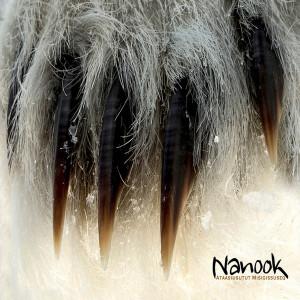Nanook: Ataasiusutut Misigissuseq