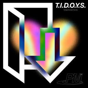 Phlake: T.I.D.O.Y.S.