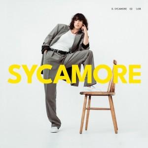 Drew Sycamore: Sycamore